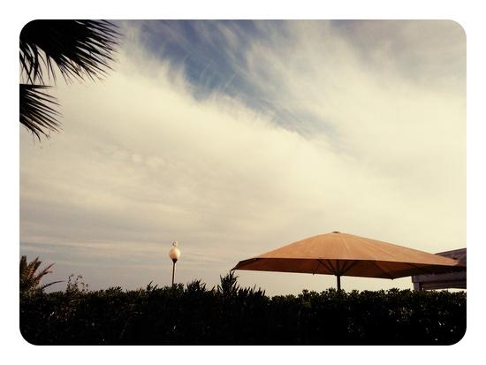 Parasol centre ville